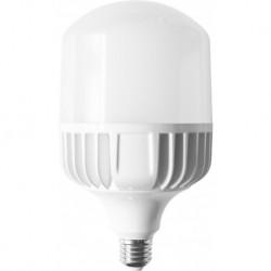 Bombilla LED E27 T100 30W