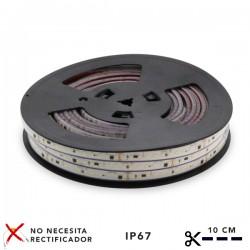 Tira de LED 220VAC SMD2835...